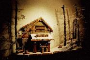 Ski-On-Inn<br>Private Commission