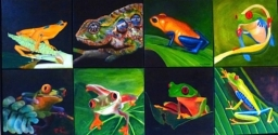 2012 Several Amazon Dart Frogs -individual paintings